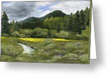 Rapid Creek Greeting Card