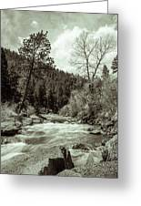 Rapids During Spring Flow On The South Platte River Greeting Card