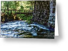 Rapids Greeting Card by William Norton