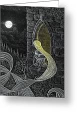 Rapunzel By Night Greeting Card