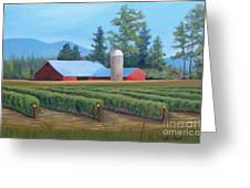 Raspberry Fields Forever Greeting Card