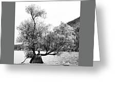Rattle Snake Lake Greeting Card
