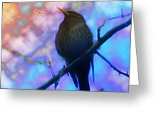 Raven In Spring Greeting Card