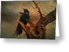 Raven Lover Greeting Card