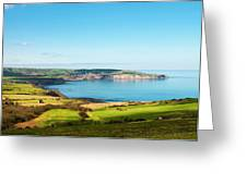 Ravenscar1 Greeting Card