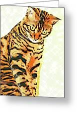 Ravi Series #3 Greeting Card