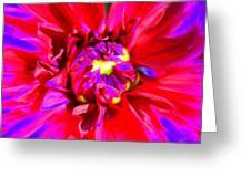 Raving Beauty Greeting Card