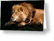 Raw Lion Power Greeting Card