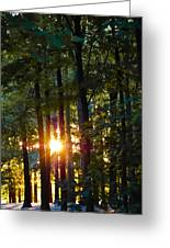 Rays Of Dawn Greeting Card