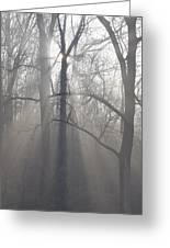 Rays Of Hope Greeting Card by Bill Cannon