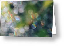 Rays Up Close Greeting Card