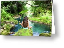 Reach Falls River Greeting Card