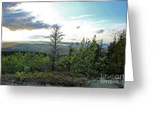 Reach To The Sky Greeting Card