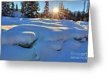 Reaching For Heat Greeting Card