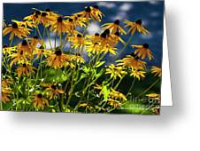 Reaching For The Blue Sky Greeting Card