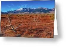 Read Fields Eastern Sierra Greeting Card