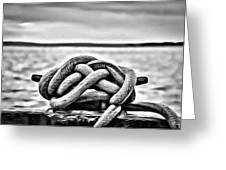 Ready To Dock Greeting Card