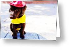 Fire Pup Ready To Roll Greeting Card