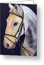 Ready To Ride Greeting Card