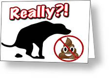 Really No Poop Greeting Card by Kathy Tarochione