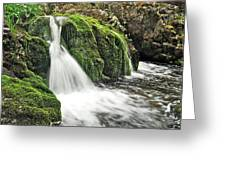 Reany Falls 1 Greeting Card