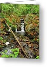 Reany Falls 2 Greeting Card