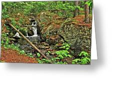 Reany Falls 3 Greeting Card
