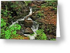 Reany Falls 5 Greeting Card