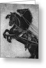Rearing Horses Greeting Card