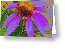 Recolored Echinacea Flower Greeting Card