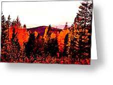 Red   Adventure  Greeting Card