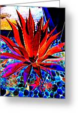 Red Agave Greeting Card