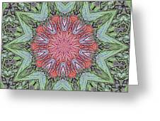 Red Amaryllis Trio Kaleidoscope Greeting Card