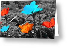 Red And Blue Flowers On Gray Background Greeting Card