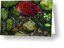 Red And Rocks Greeting Card
