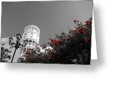Red And White Contrast Greeting Card