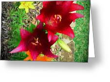 Red And Yellow Garden Flowers Greeting Card