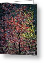 Red And Yellow Leaves Abstract Vertical Number 1 Greeting Card