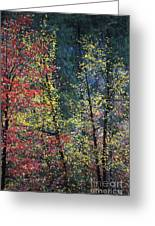 Red And Yellow Leaves Abstract Vertical Number 2 Greeting Card