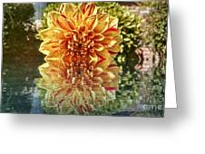Red And Yellow Reflection Greeting Card