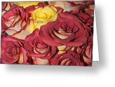 Red And Yellow Roses Greeting Card