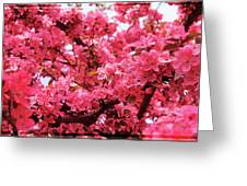 Red Apple Blossoms 6  Greeting Card