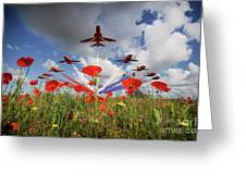 Red Arrows Poppy Fly Past Greeting Card