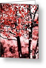 Red Aspen II Greeting Card