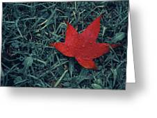 Red Autumn Greeting Card