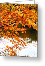 Red Autumn Leaves 2 Greeting Card