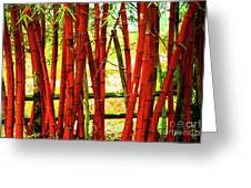 Red Bamboo Greeting Card