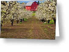 Red Barn Avenue Greeting Card by Mike  Dawson