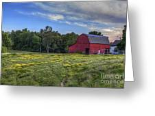 Red Barn In A Yellow Field  Greeting Card