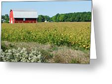 Red Barn In Pasture Greeting Card